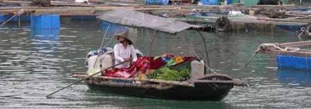 Vietnam: impresiones postviaje