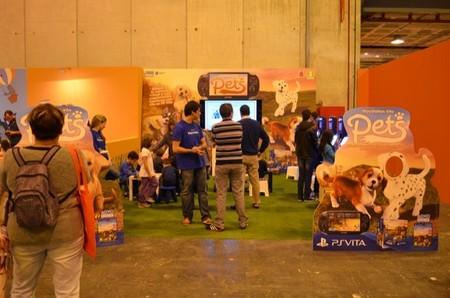 Hemos estado jugando al Pets para Playstation Vita en 100x100 Mascota 2014