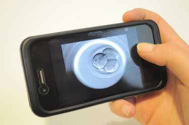 Una aplicación permite ver la fecundación de tu hijo por internet en los tratamientos de fertilidad