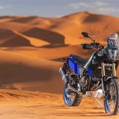 Foto 29 de 53 de la galería yamaha-xtz700-tenere-2019-prueba en Motorpasion Moto