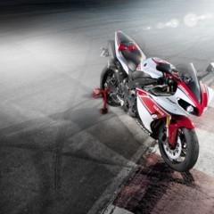 Foto 7 de 20 de la galería yamaha-yzf-r1-2012-50-aniversario-datos-e-imagenes-oficiales en Motorpasion Moto