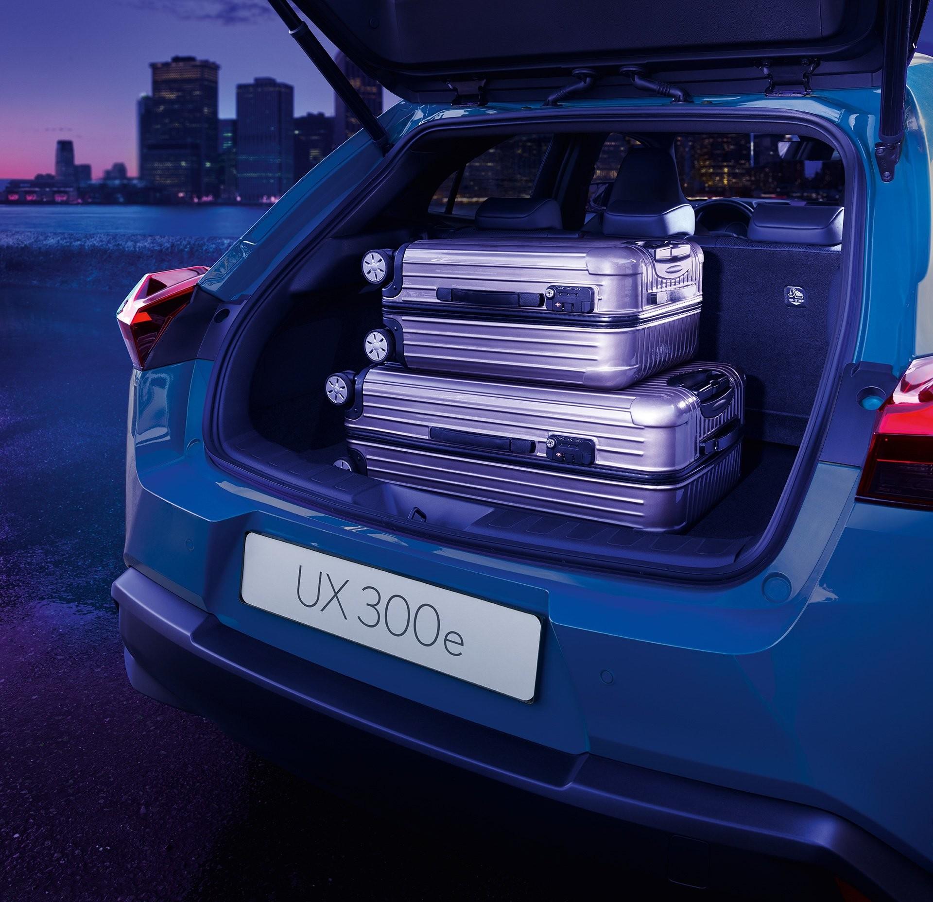 Foto de Lexus UX 300e (21/24)