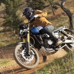 Foto 53 de 91 de la galería triumph-scrambler-1200-xc-y-xe-2019 en Motorpasion Moto