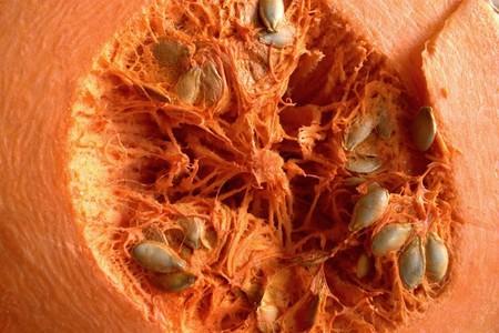 Aceite de calabaza, una fuente de ácidos grasos muy beneficiosa