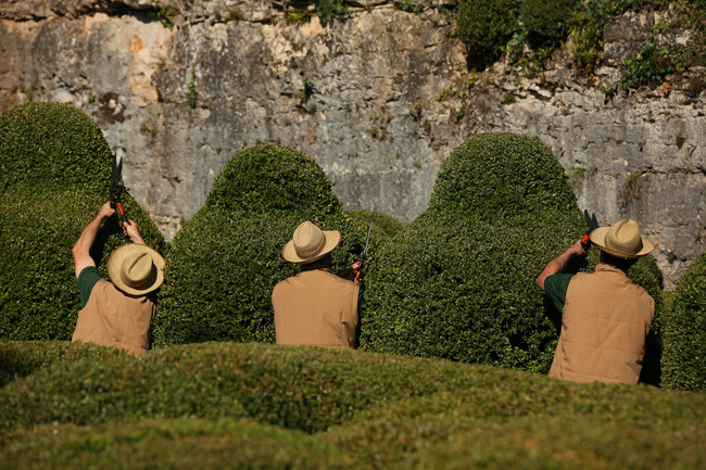 Marqueyssac Jardins 15