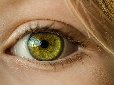 Primer caso de su tipo de un gusano encontrado en el ojo de una mujer