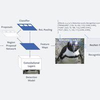 'Rosetta', el sistema de inteligencia artificial de Facebook que les ayudará a entender e identificar 'memes'