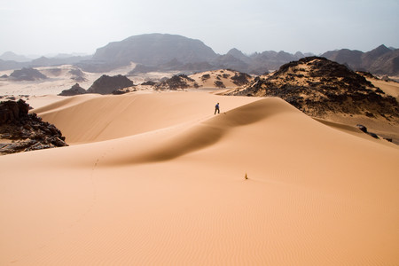 Hace miles de años el Sáhara era un lugar verde y húmedo. Hasta que llegaron los humanos