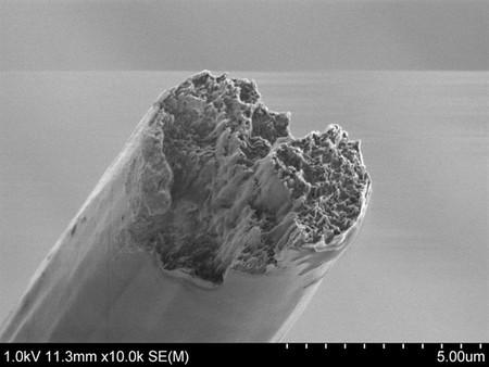 Este biomaterial ya es el más fuerte del mundo, por encima del acero