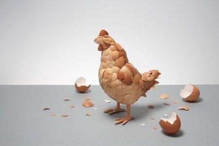Arte con cáscaras de huevo