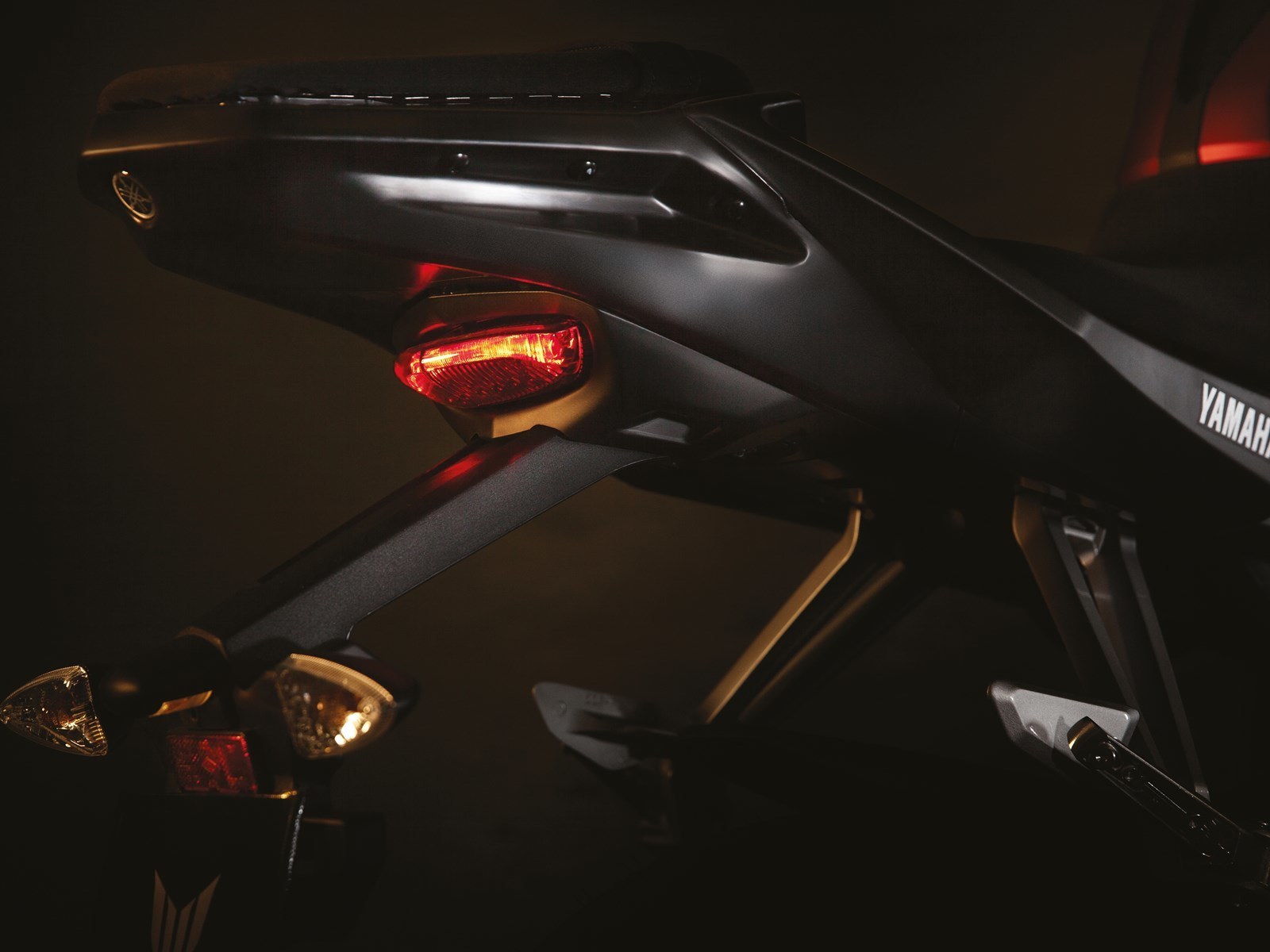 Foto de Yamaha MT-125, detalles (13/17)