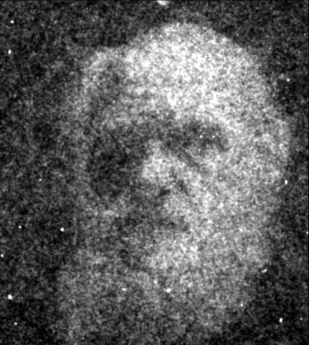 """Estos investigadores han """"diseñado"""" una """"coreografía de bacterias"""" y han dibujado las caras de Einstein y Darwin con ella"""