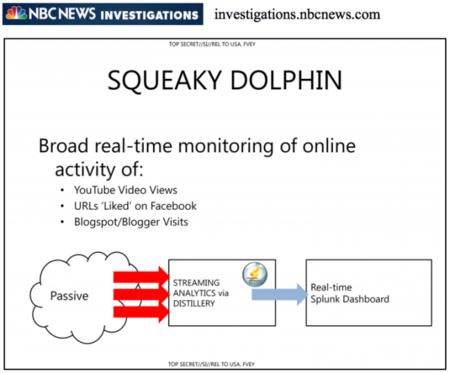 Squeaky Dolphin