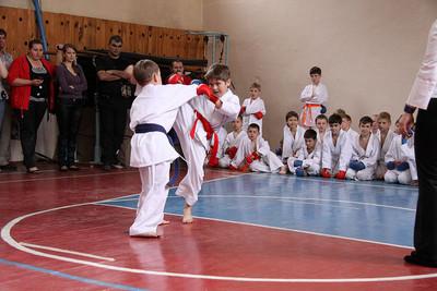 Artes marciales mixtas (MMA), un deporte de demasiado contacto
