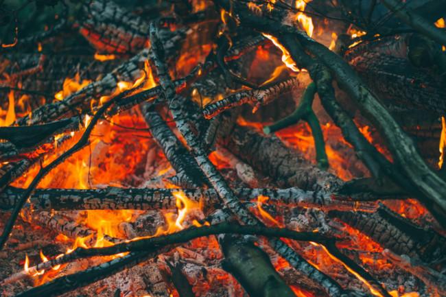¿Por qué todo está ardiendo? Cómo explicar los incendios forestales a los niños