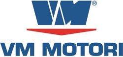 Fiat y GM se reparten al 50% VM Motori