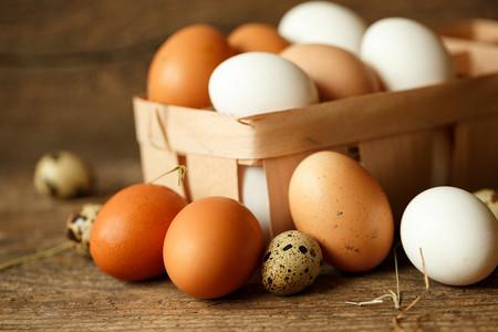 Alimentación ovolactovegetariana. Huevos