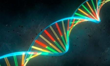 El reloj biológico que mide la edad de nuestros órganos