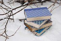 Este invierno no podrás poner excusa para leerte un buen libro de programación