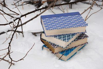 Libros de programación para el invierno
