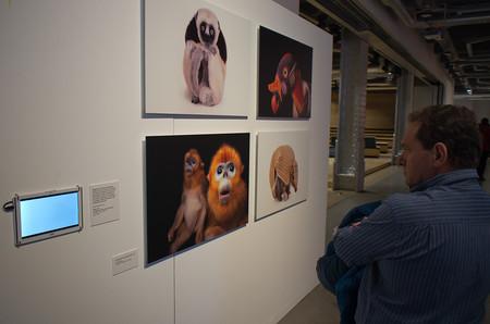 Exposicion Fotos
