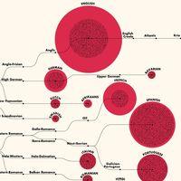 Los 100 idiomas más hablados del mundo, reunidos en un fascinante diagrama