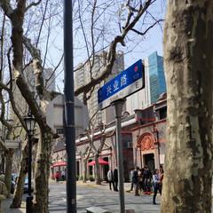 Foto 17 de 40 de la galería xiaomi-mi-mix-2-zoom-de-dos-aumentos en Xataka