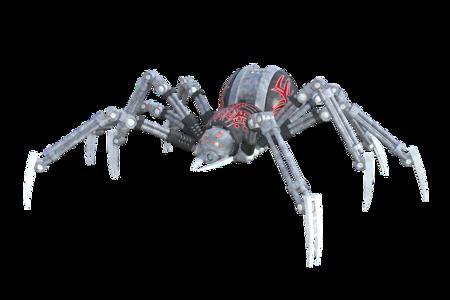 Spider 1615195 960 720