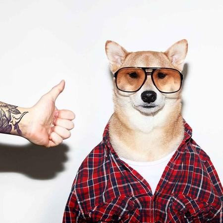 En El Nuevo Ano Chino Dedicado Al Perro Recordamos Los Mejores Looks De Nuestro Favorito Mensweardog 05