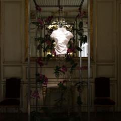 Foto 6 de 6 de la galería estudio-campanas-para-lacoste en Trendencias Hombre