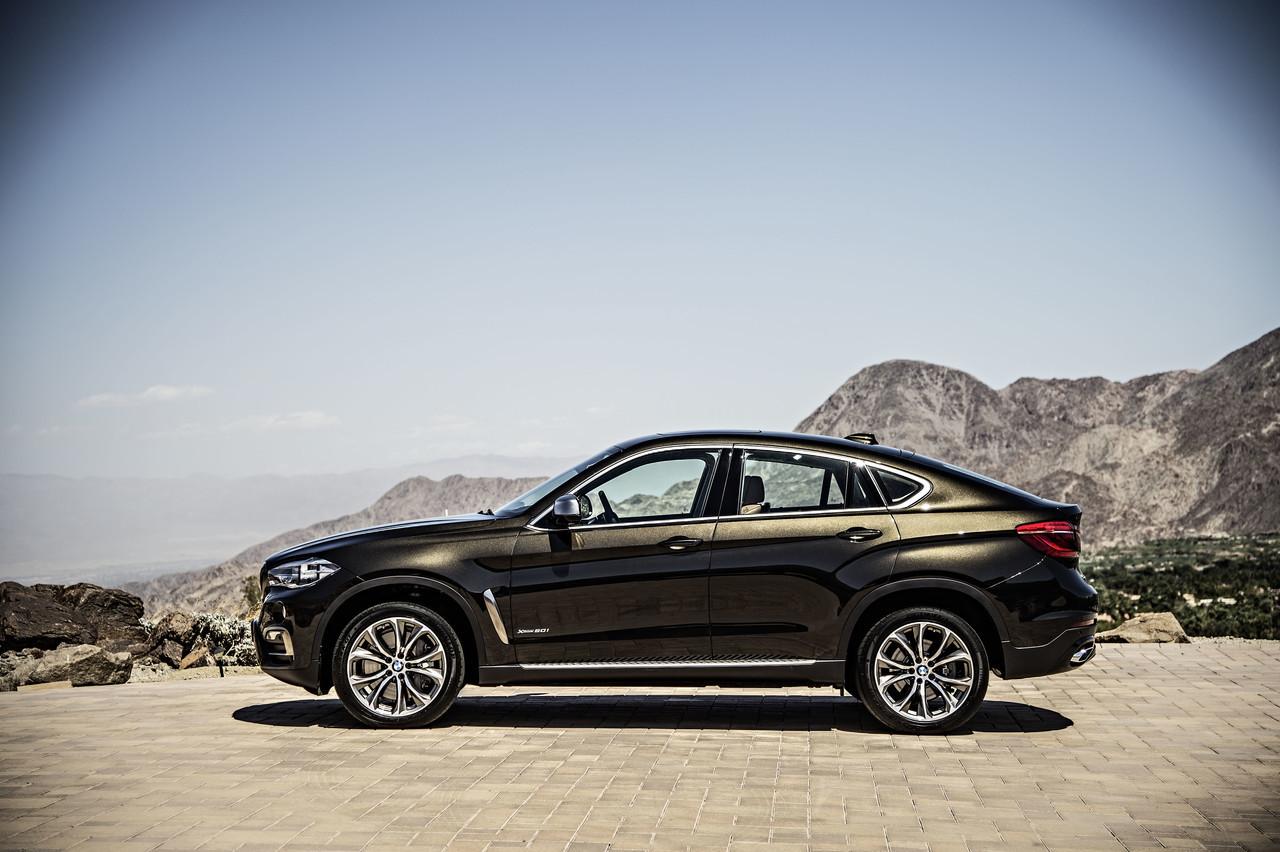 Foto de BMW X6 2014 (71/96)