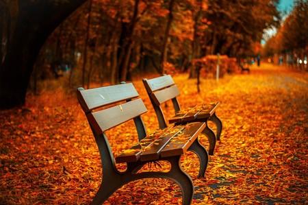 Los 17 lugares más bonitos del mundo para disfrutar de los colores del otoño