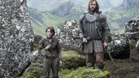 Las diez series más descargadas de 2014: Nadie puede con 'Juego de Tronos'