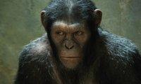 'El origen del planeta de los simios', mucho más que entretenimiento