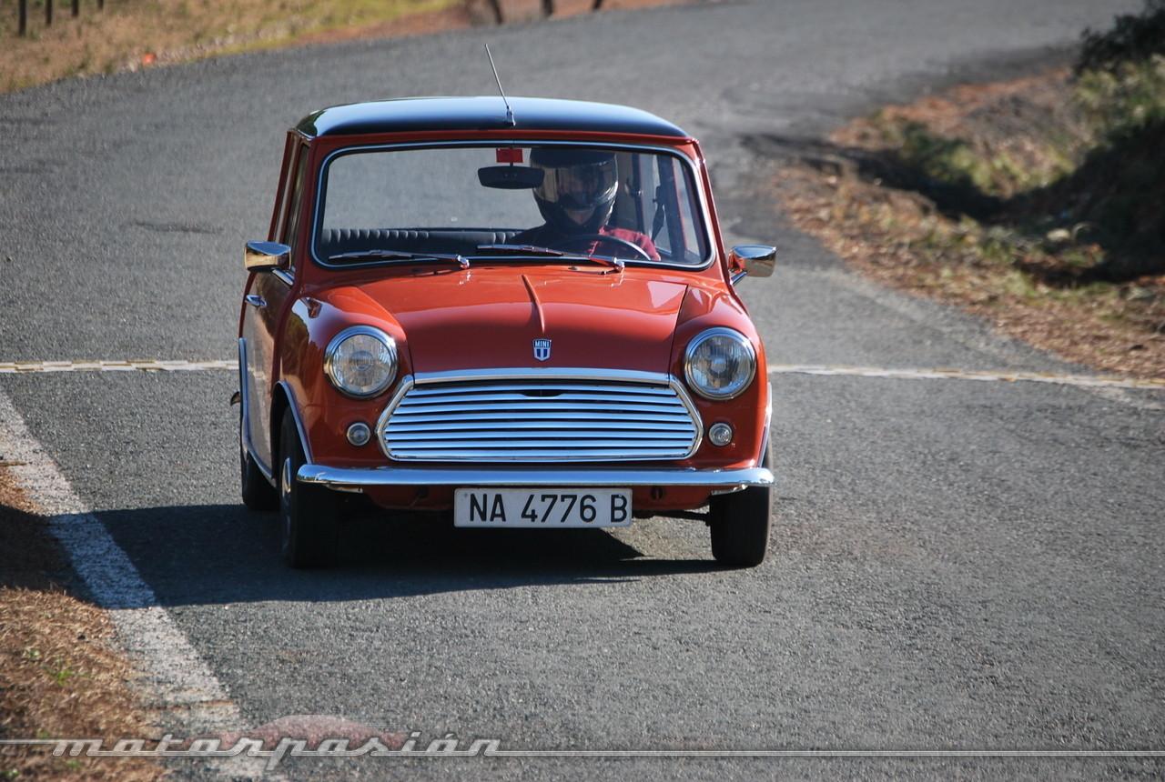 Foto de Authi Mini 850 L (prueba) (41/62)