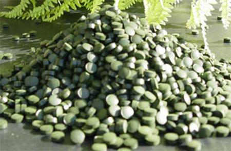 Alga espirulina para adelgazar de forma sana