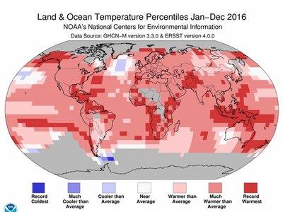 Confirmado que 2016 fue el año más cálido desde 1880