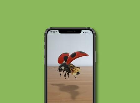 Google añade a los resultados de búsqueda insectos en 3D y realidad aumentada: estos son los disponibles y así puedes verlos