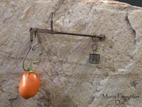 Kcal. ¿Cuánto pesa nuestra comida? (I)