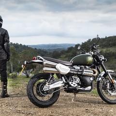 Foto 1 de 91 de la galería triumph-scrambler-1200-xc-y-xe-2019 en Motorpasion Moto