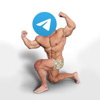Cómo configurar Telegram para que use menos espacio de almacenamiento en un móvil Android