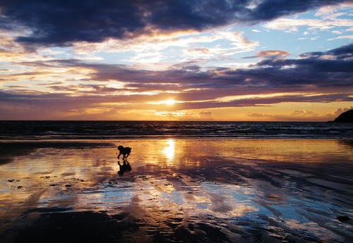Siete consejos que te permitirán mejorar la calidad de tus fotografías en la playa