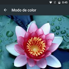 Foto 16 de 16 de la galería moto-z-play-software en Xataka Android