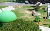 La estatua de Android Jelly Bean se derrite y aprovechan para robar sus judías, la imagen de la semana