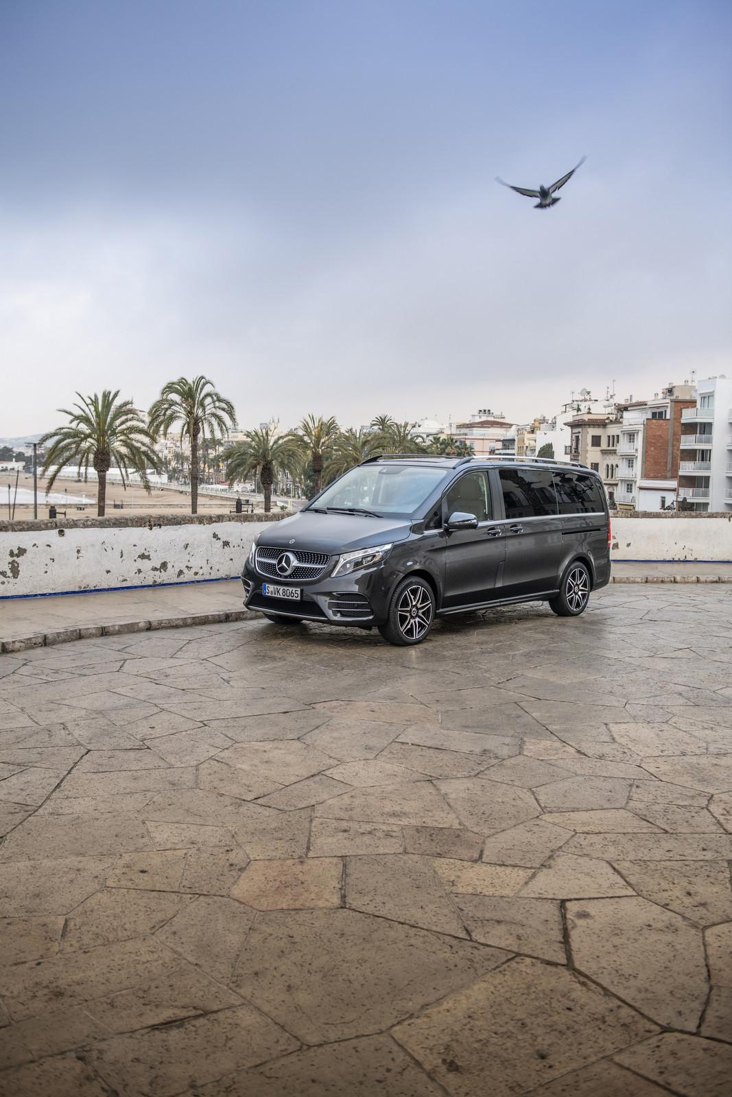 Foto de Mercedes-Benz Clase V 2019 (51/92)