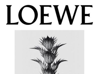 Loewe 001, dos perfumes que pueden convertirse en un tercero al unirse