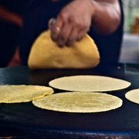 Cómo reconocer cuando una tortilla es de mala calidad
