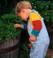 Descubierto uno de los genes que determinan la estatura