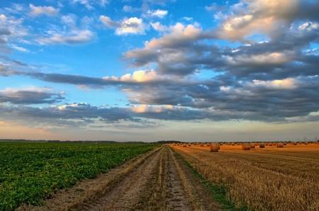 Europa se merece una política agraria centrada en el medio ambiente y la salud de la gente