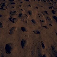 Foto 9 de 12 de la galería ejemplo-de-filtros-olympus-e-p5 en Xataka Foto
